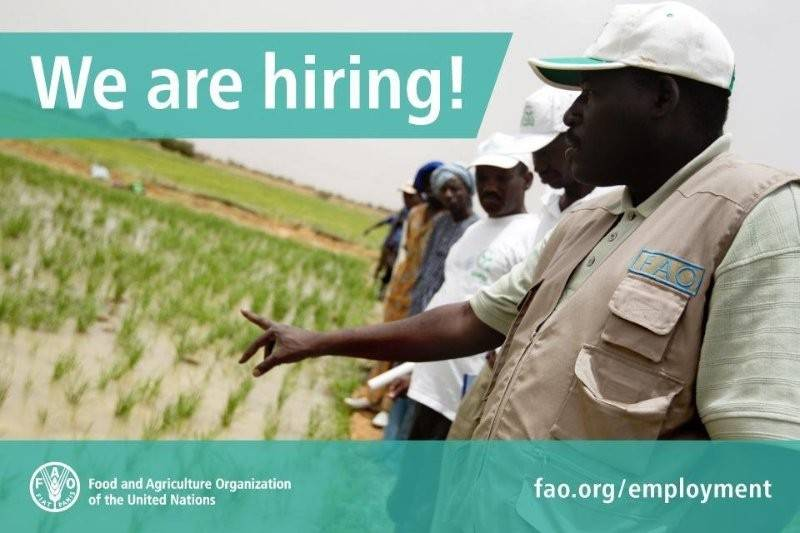 Fao Health Services Vacancy Announcement Physiotherapist